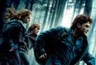 『ハリーポッター死の秘宝1』を観る。