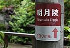 鎌倉散策記#01「明月院」。