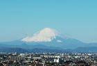 初春と富士山。